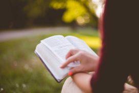 scripture is alive
